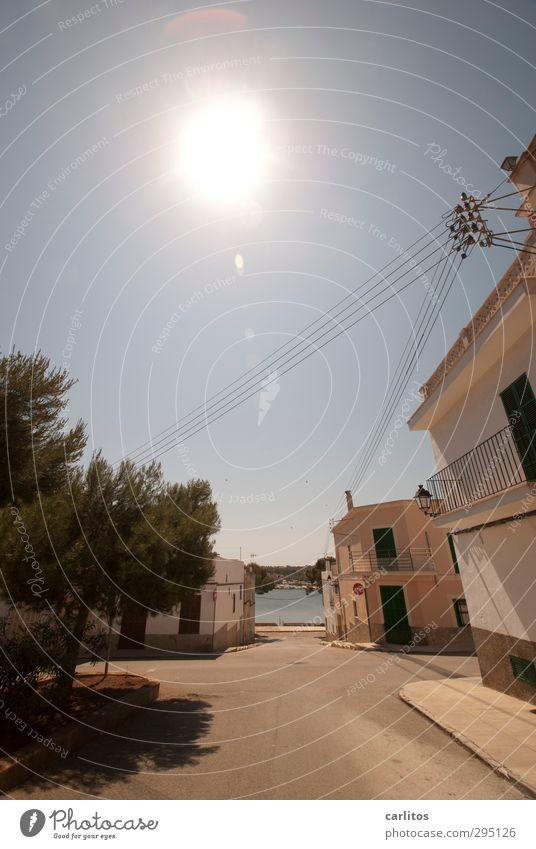 Noch eine Woche bis zur Sommerzeit Wolkenloser Himmel Sonne Schönes Wetter Wärme Baum Küste Haus Mauer Wand Balkon Fenster ästhetisch Pinie Kabel Perspektive