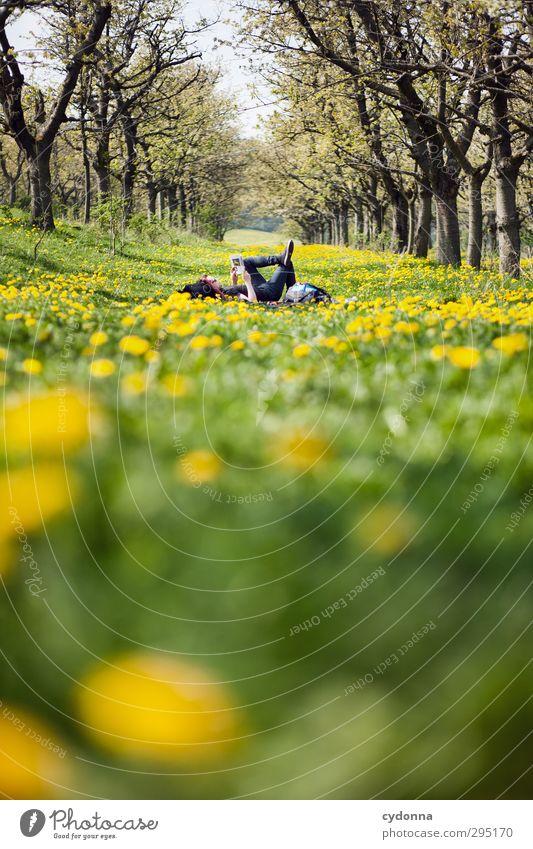 Auszeit im Grünen Mensch Natur Jugendliche Ferien & Urlaub & Reisen Baum Blume Landschaft ruhig Erholung Erwachsene Umwelt Junger Mann Wiese Leben Frühling