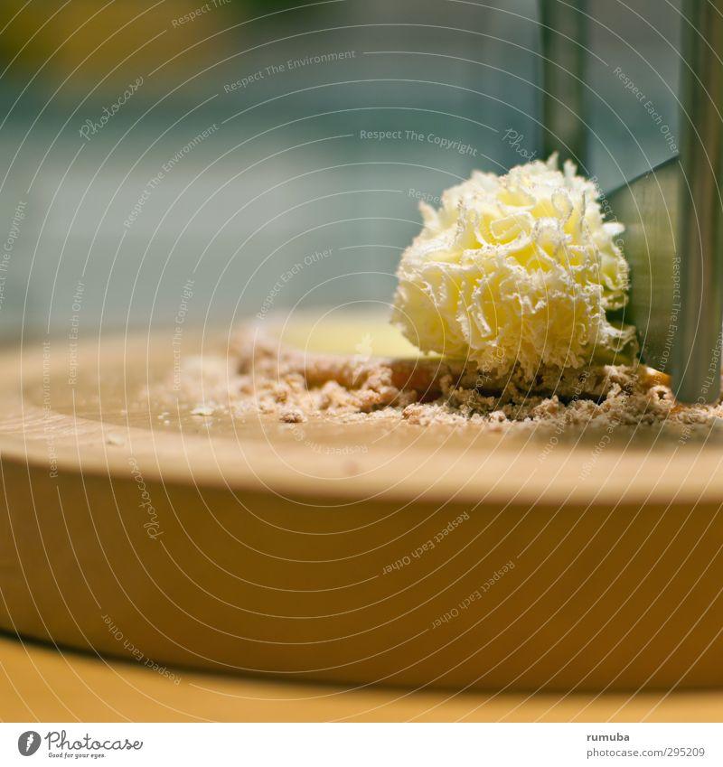Käsehobel blau gelb Essen braun Lebensmittel Zufriedenheit Ernährung genießen einzigartig Küche lecker drehen Büffet Brunch Fingerfood