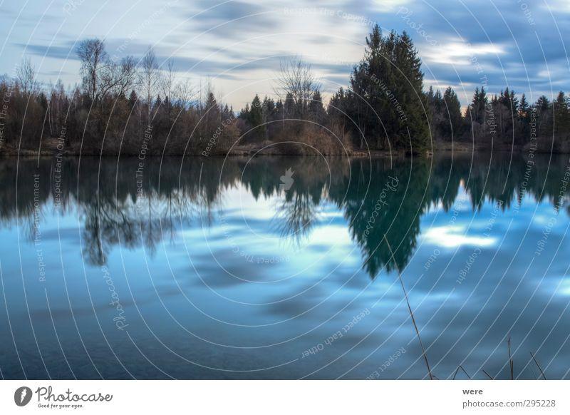 Still ruht der See Schwimmen & Baden Freiheit Umwelt Natur Landschaft Wasser Himmel Wolken Sonnenaufgang Sonnenuntergang Wald Seeufer Teich Menschenleer