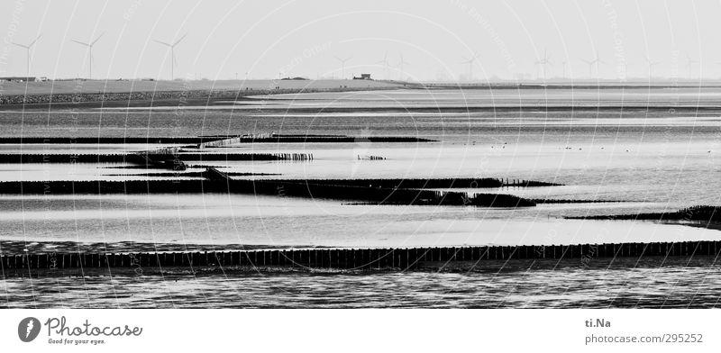 Land gewinnen weiß Landschaft Winter schwarz Frühling Küste grau Horizont Wellen Schönes Wetter nass Tourismus Nordsee silber