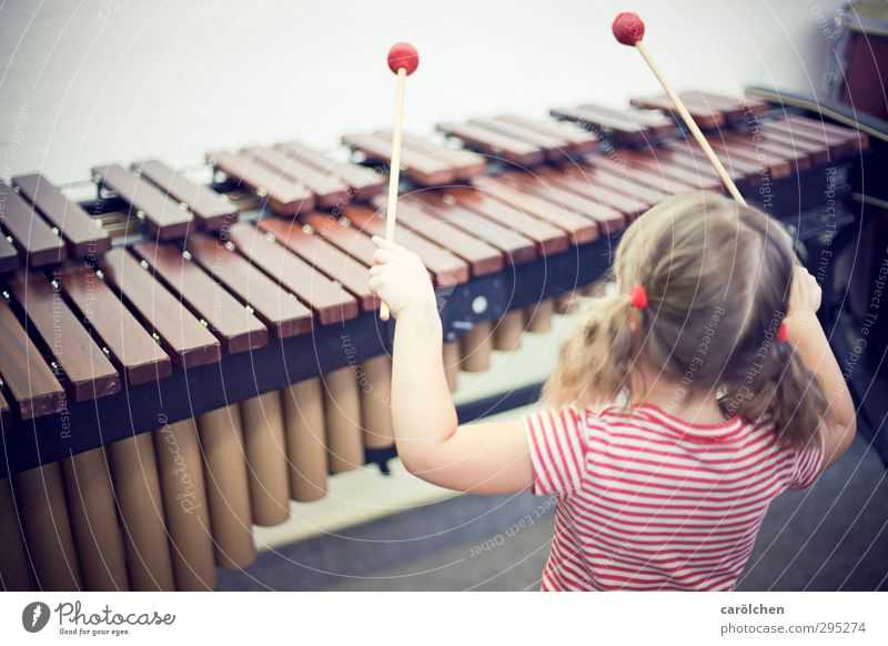 Musik Kind rot braun Musikinstrument Musiker musizieren Xylophon Marimba