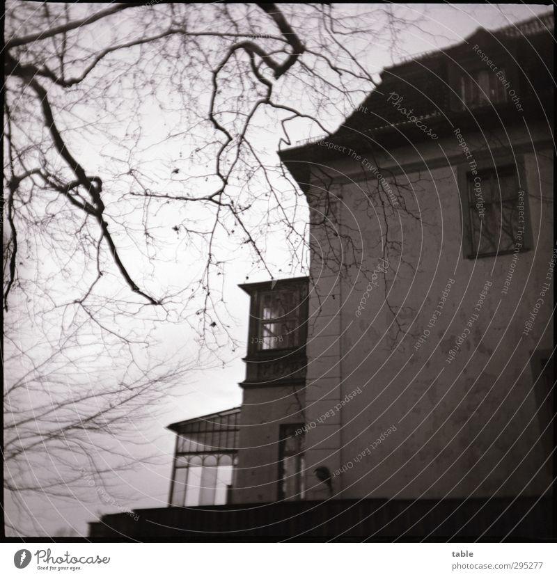 as time went by . . . Himmel Herbst Winter Baum Menschenleer Bauwerk Gebäude Architektur Villa Mauer Wand Fassade Balkon Terrasse Fenster Dach Dachrinne alt