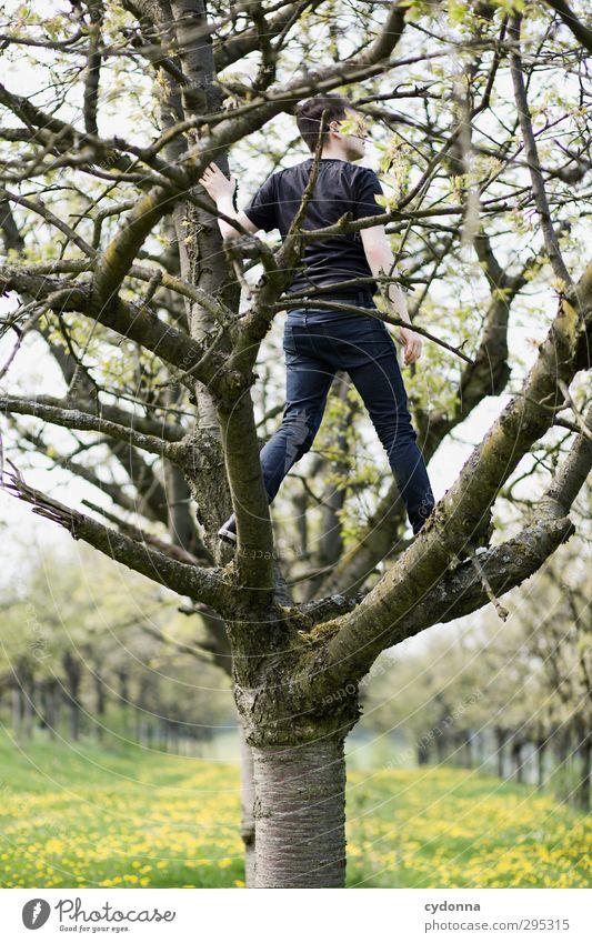 Aussicht auf Frühling Mensch Natur Jugendliche Baum Blume Landschaft ruhig Erholung Erwachsene Umwelt Ferne Junger Mann Leben Freiheit 18-30 Jahre