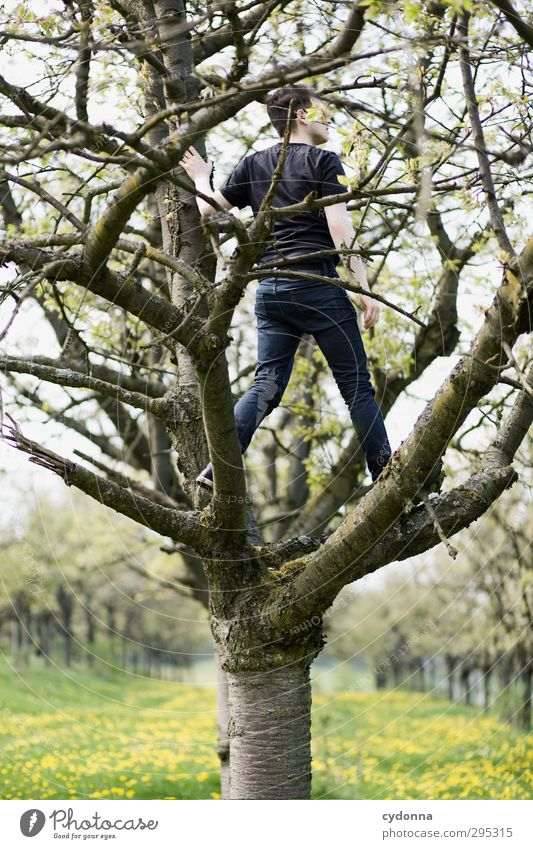 Aussicht auf Frühling Stil Gesundheit Leben Wohlgefühl Erholung ruhig Ausflug Abenteuer Ferne Freiheit Mensch Junger Mann Jugendliche 1 18-30 Jahre Erwachsene