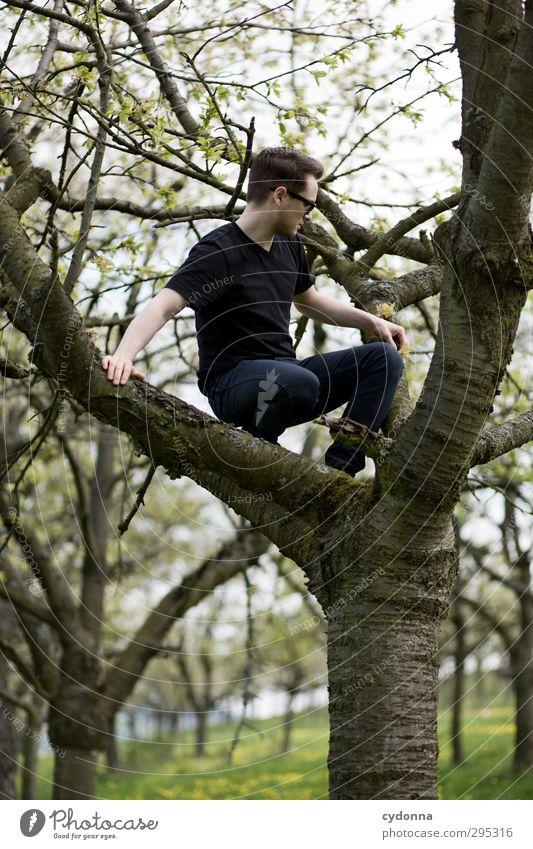 Y Mensch Natur Jugendliche Baum Landschaft ruhig Erwachsene Umwelt Junger Mann Leben Gefühle Frühling Freiheit 18-30 Jahre Stil Gesundheit