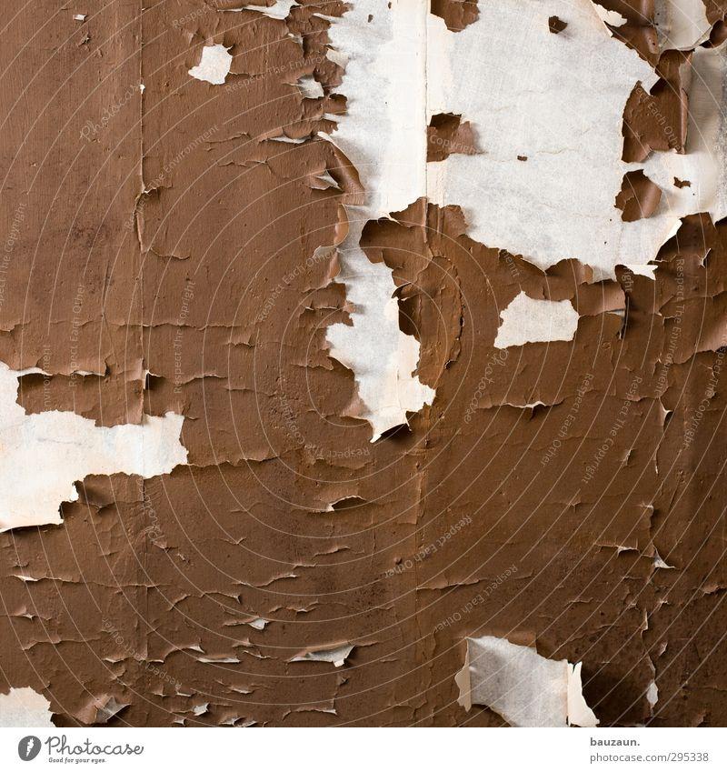 ut köln | clouth | kopf hoch. weiß Farbe Haus Wand Farbstoff Innenarchitektur Mauer Gebäude braun Fassade Wohnung Armut Häusliches Leben Beton kaputt Baustelle