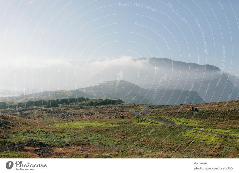Madeira I Natur blau Ferien & Urlaub & Reisen grün Sommer Pflanze Sonne Landschaft Tier Umwelt Ferne Berge u. Gebirge Freiheit braun Erde wandern