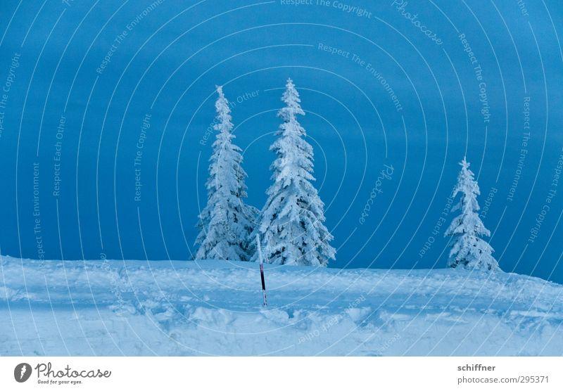 Der letzte macht das Licht aus Himmel Natur blau Pflanze Baum Einsamkeit Landschaft Wolken Winter Umwelt dunkel Berge u. Gebirge kalt Schnee Traurigkeit Eis