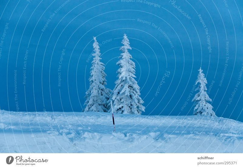 Der letzte macht das Licht aus Umwelt Natur Landschaft Pflanze Himmel Wolken Winter Eis Frost Schnee Baum Berge u. Gebirge Schneebedeckte Gipfel dunkel kalt