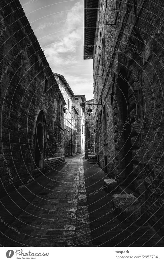 Strasse im Schatten Stimmung Außenaufnahme außergewöhnlich Perspektive Italien Toskana Florenz Pisa
