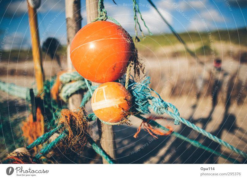 Strandgut Natur blau grün Sommer Meer Landschaft Wolken Umwelt Spielen Holz Küste orange Insel Schönes Wetter Abenteuer