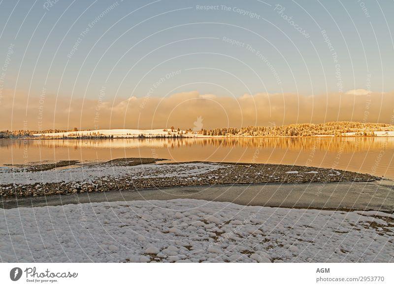 golden morning Ferien & Urlaub & Reisen Tourismus Ausflug Ferne Freiheit Winter Schnee Umwelt Natur Landschaft Tier Urelemente Erde Luft Wasser Himmel Wolken