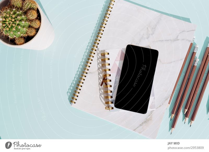 Arbeitstisch mit Notebook und Smartphone Schreibtisch Tisch Arbeit & Erwerbstätigkeit Arbeitsplatz Büro Business Telefon Handy PDA Kaktus Schreibwaren Papier