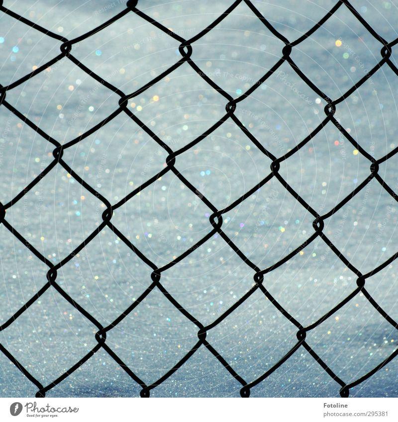 Knast für den Winter Umwelt Natur Eis Frost Schnee Coolness kalt Zaun Maschendrahtzaun Farbfoto Gedeckte Farben Außenaufnahme Nahaufnahme Detailaufnahme