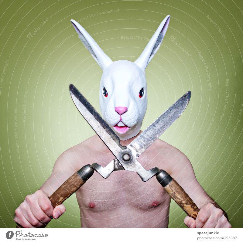 Frohe Ostern Mensch Mann Jugendliche grün weiß Tier Erwachsene Junger Mann lustig außergewöhnlich maskulin Kraft bedrohlich einzigartig dünn