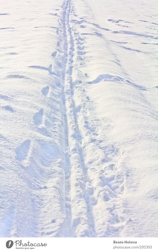Einfach immer in der Spur laufen, Timmitom ... Leben Ausflug Winter Schnee Winterurlaub Wintersport wandern Sonnenlicht Schönes Wetter Wege & Pfade Linie weiß