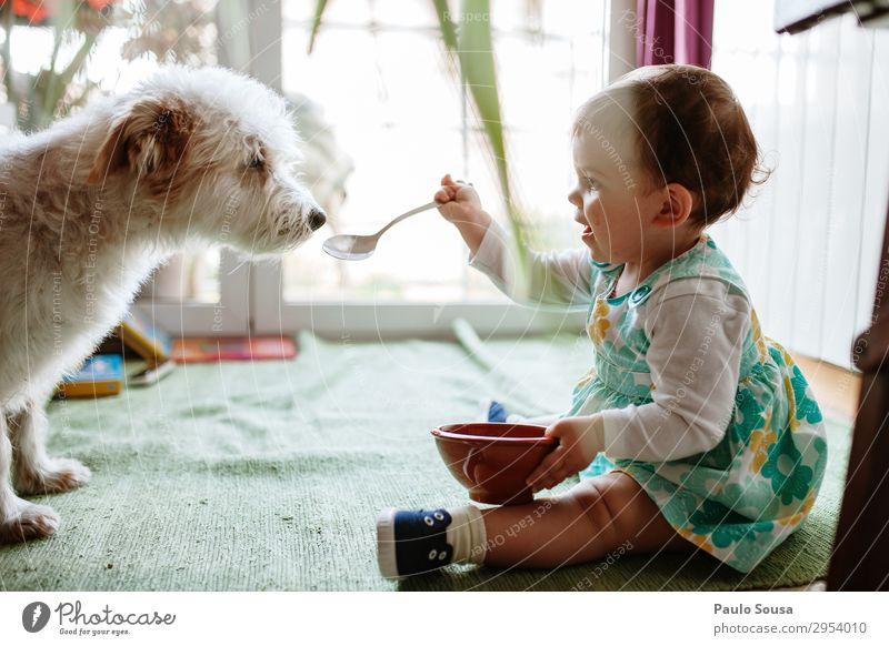 Baby und Hund Lifestyle Mensch Kleinkind Mädchen 1 1-3 Jahre Tier Haustier Essen genießen Freundlichkeit Fröhlichkeit Zusammensein Glück lustig natürlich Freude