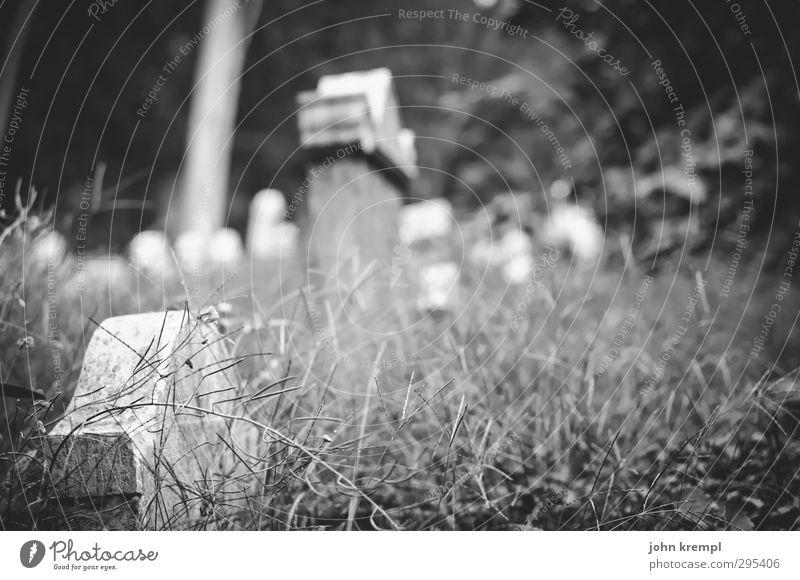 Alte Grabsteine | Venezia IV dunkel Tod Traurigkeit Religion & Glaube Idylle Vergänglichkeit Trauer Italien historisch Vergangenheit gruselig Sehenswürdigkeit