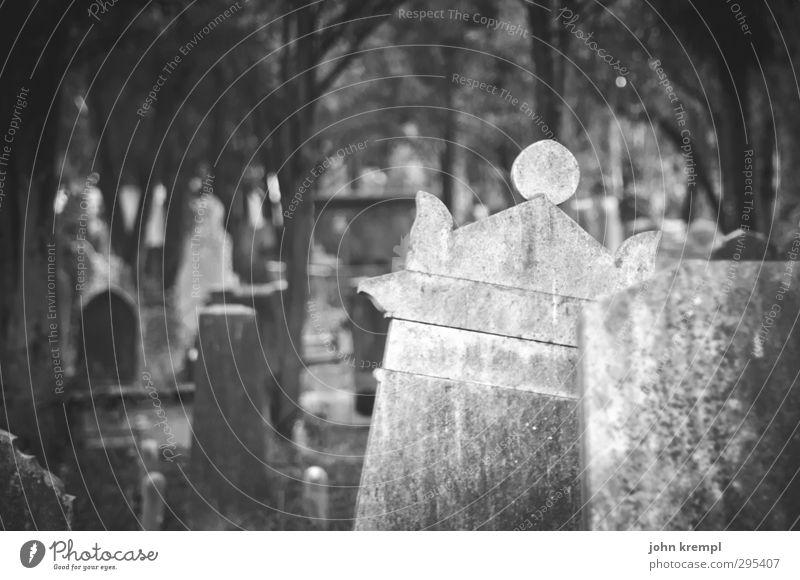 Alte Grabsteine | Venezia V dunkel Tod Traurigkeit Religion & Glaube Stein Wandel & Veränderung Vergänglichkeit Trauer Italien historisch Vergangenheit gruselig