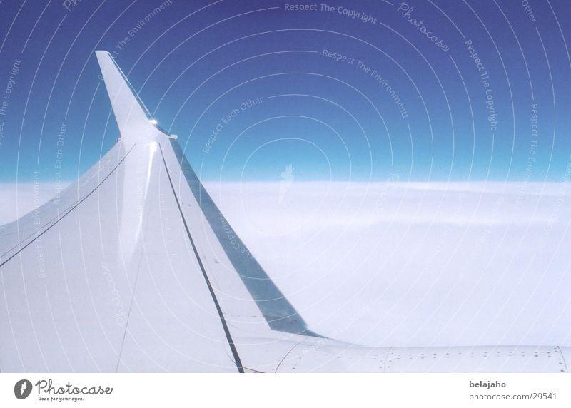 über den Wolken Himmel weiß blau Ferien & Urlaub & Reisen Flugzeug Luftverkehr Niveau Flügel