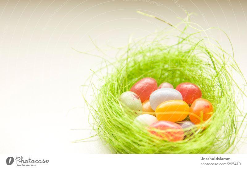 Ostergrüße grün schön weiß Farbe rot Freude Glück klein Feste & Feiern hell orange Kindheit Lifestyle Häusliches Leben Dekoration & Verzierung niedlich