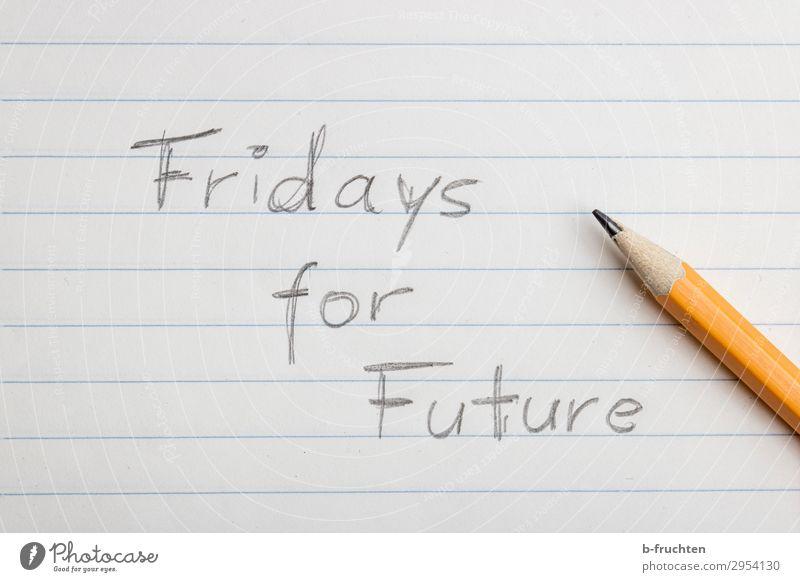 Fridays for future Natur Umwelt Schule Freiheit Zusammensein Zukunft Papier Klima Schutz schreiben Bildung Meinung Schreibstift Zettel Klimawandel Bleistift