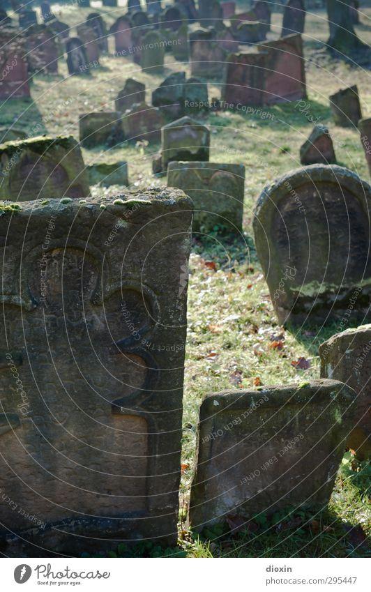 Alte Grabsteine | So richtig alt Wiese Worms Menschenleer Friedhof Sehenswürdigkeit Stein Schriftzeichen Ornament authentisch gruselig Traurigkeit Trauer Tod