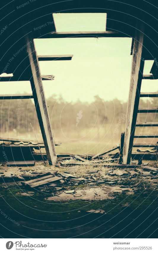 Dachterrasse Kleinstadt Stadtrand Menschenleer Haus Ruine Holz alt dreckig ruhig Einsamkeit Verfall Vergangenheit Vergänglichkeit Farbfoto Gedeckte Farben