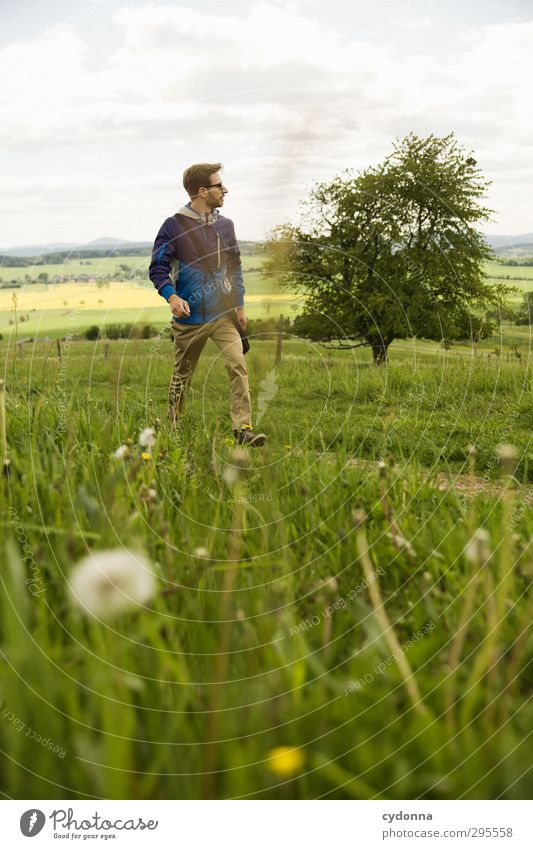 und weiter ... Mensch Natur Jugendliche Ferien & Urlaub & Reisen Sommer Baum Landschaft Erholung Erwachsene Umwelt Ferne Junger Mann Wiese Leben Gras Frühling