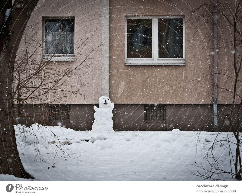 moaning Stadt weiß Einsamkeit Winter Haus Fenster dunkel kalt Schnee Gefühle Traurigkeit Garten Schneefall braun Angst Fassade