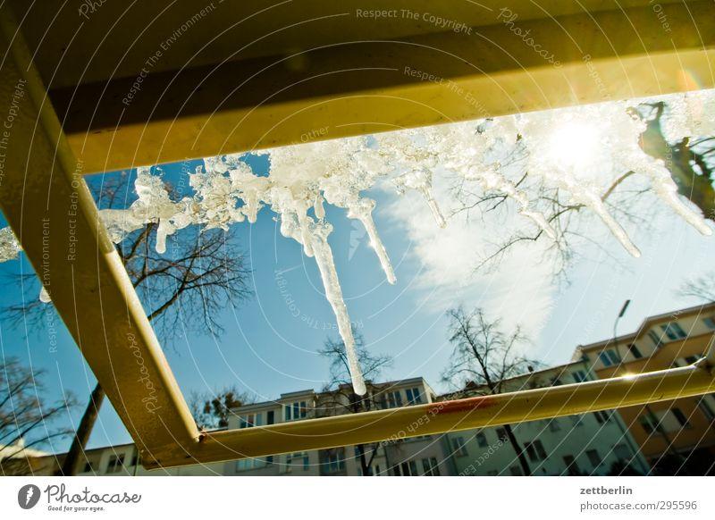 Eiszapfen Frost kalt Schnee Schneedecke wallroth Wetter Winter Winterlicht Tauwetter tauen Sonne Gegenlicht Baum Himmel Tag hell Metall Stab gestänge