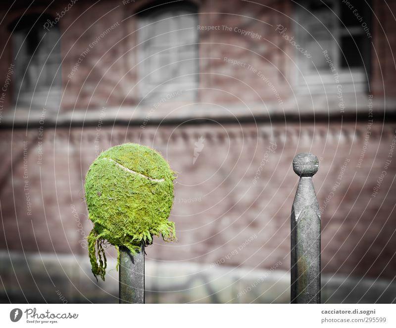 don't look at me grün Traurigkeit lustig grau Kunst außergewöhnlich Metall Spitze einfach kaputt rund Pause Zaun Ball Schmerz Kugel