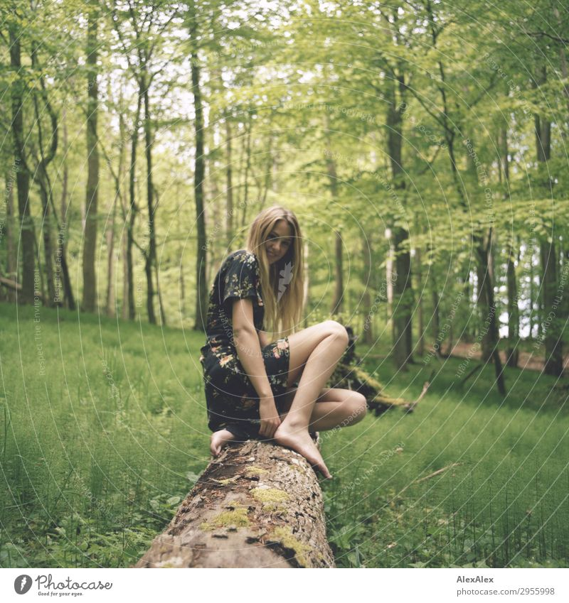 Junge Frau auf einem Baumstamm im Wald Natur Jugendliche Sommer schön Landschaft Freude 18-30 Jahre Beine Erwachsene Leben Frühling natürlich Stil Ausflug