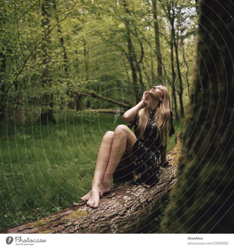 Junge Frau in Sommerkleid barfuß auf einem Baumstamm im Wald Stil schön Leben harmonisch Jugendliche Beine 18-30 Jahre Erwachsene Natur Landschaft Frühling