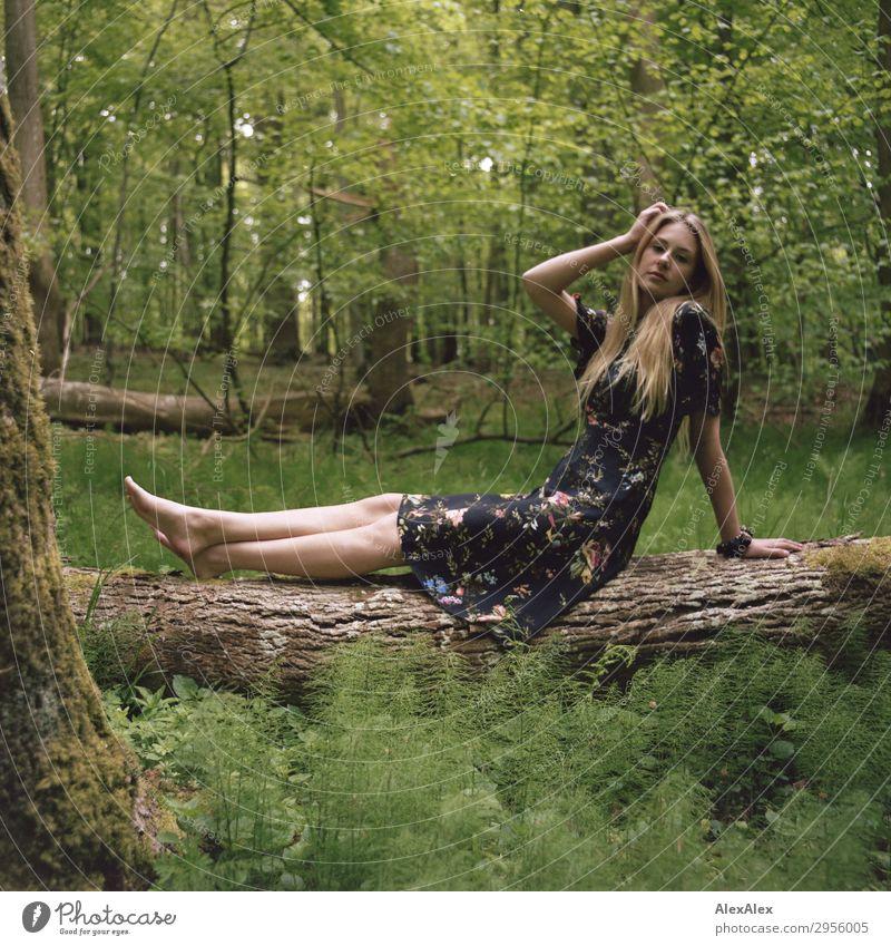 Junge Frau auf einem Baumstamm im Wald Stil schön Leben Ausflug Jugendliche Beine 18-30 Jahre Erwachsene Natur Pflanze Schönes Wetter Kleid Barfuß blond
