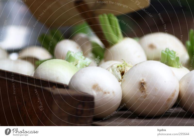Marktbeobachtung: Rettich weiß Gesunde Ernährung Essen natürlich Gesundheit Lebensmittel frisch genießen Kochen & Garen & Backen einfach rund Scharfer Geschmack