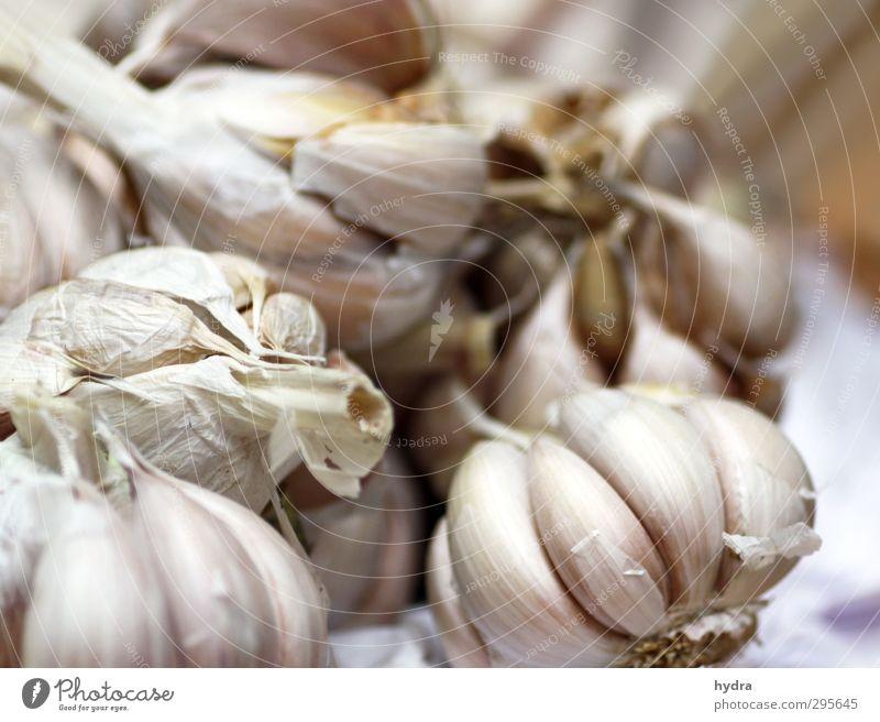 Marktbeobachtung: Knoblauch weiß Gesunde Ernährung Essen natürlich Gesundheit Lebensmittel frisch genießen Kochen & Garen & Backen einfach Kräuter & Gewürze