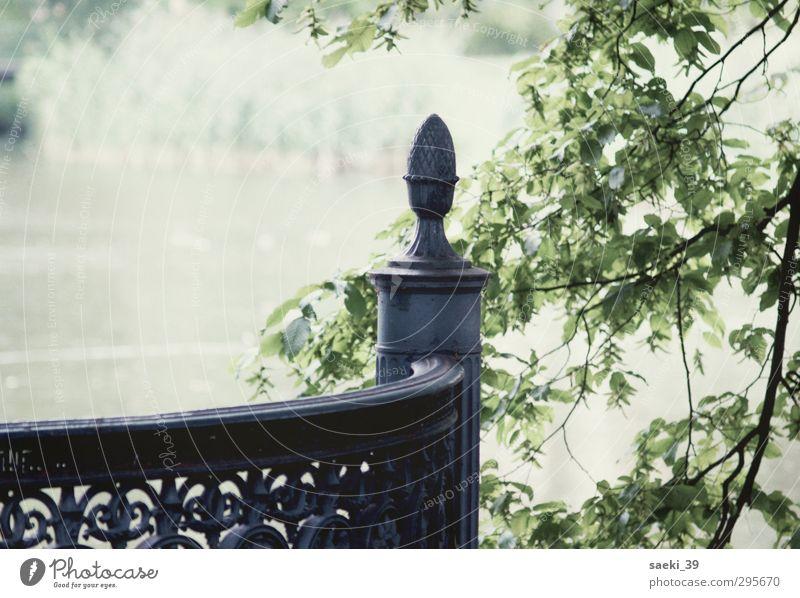 silence Natur Landschaft ruhig Erholung See träumen Stimmung Park weich Verschwiegenheit