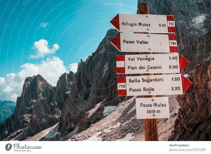 Hinweisschilder am Passo Mulaz Abenteuer wandern Schönes Wetter schlechtes Wetter Nebel Gipfel Sommer Landschaft Natur Umwelt Ferne Freiheit Berge u. Gebirge