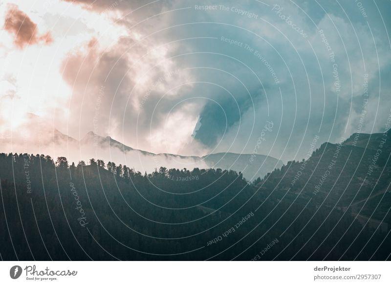 Dolomiten in den Wolken VII Abenteuer wandern Schönes Wetter schlechtes Wetter Nebel Gipfel Sommer Landschaft Natur Umwelt Ferne Freiheit Berge u. Gebirge