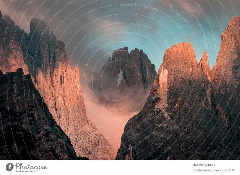 Sonnenaufgang in den Dolomiten Abenteuer Ferne Freiheit Berge u. Gebirge wandern Umwelt Natur Landschaft Sommer Schönes Wetter Nebel Gipfel Alpen Felsen