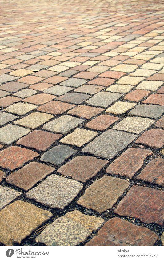 Kopfsteinpflaster Altstadt Menschenleer Platz Straße Stein ästhetisch authentisch Ferne historisch positiv Sauberkeit Stadt Stil Symmetrie Wege & Pfade