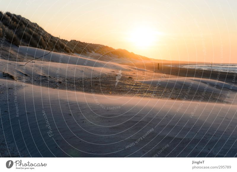 Sandhauch Landschaft Himmel Sonnenuntergang Sonnenlicht Schönes Wetter Strand entdecken wandern Unendlichkeit braun gold rot weiß Kraft Sehnsucht Fernweh