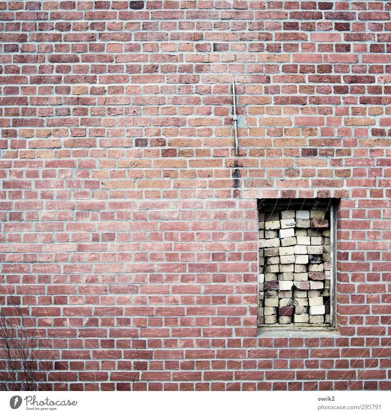 Nachhaltigkeit Fenster Wand Mauer Stein Angst Fassade Sicherheit einfach Baustelle viele Schutz fest Zusammenhalt Backstein Platzangst Wachsamkeit