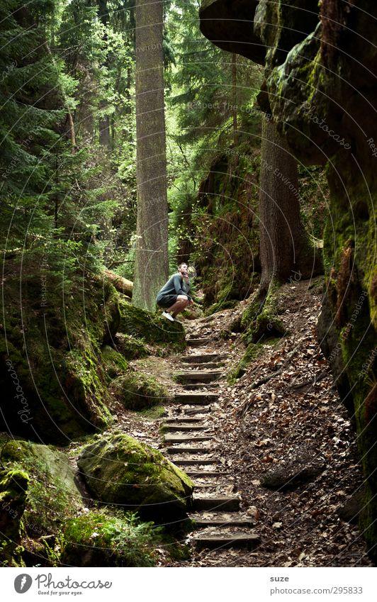 Dichter und Denker* Mensch Natur Mann Jugendliche grün Pflanze Baum Landschaft Wald Erwachsene Umwelt Gefühle 18-30 Jahre natürlich braun Felsen