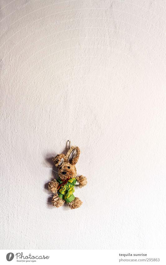 Ostern vorbei Mauer Wand Putzfassade Tier Haustier Hase & Kaninchen Osterhase Stofftiere 1 weiß Farbfoto Innenaufnahme Menschenleer Textfreiraum rechts