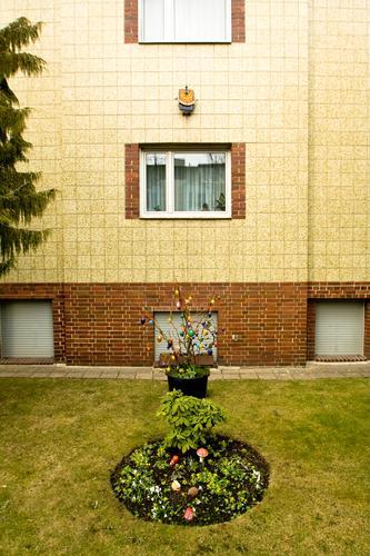 Ostern Frost kalt Park Saison wallroth Vorgarten Ostergeschenk Osterwunsch Dekoration & Verzierung Osterei Feste & Feiern Haus Einfamilienhaus Fenster Fassade