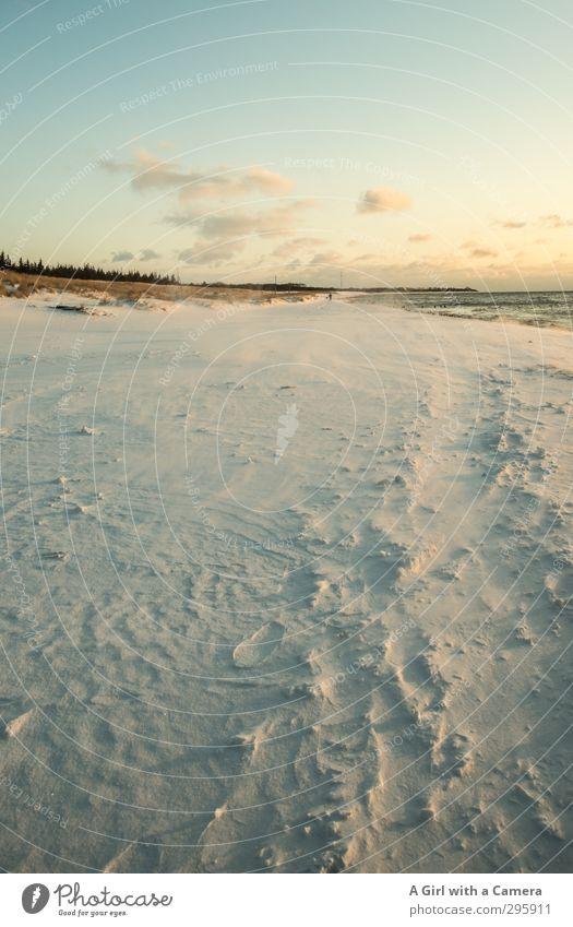 ^ Umwelt Natur Landschaft Himmel Wolken Winter Schnee Küste Ostsee Zingst Darß Weststrand lang Sauberkeit weich weiß Ferne Gedeckte Farben Außenaufnahme