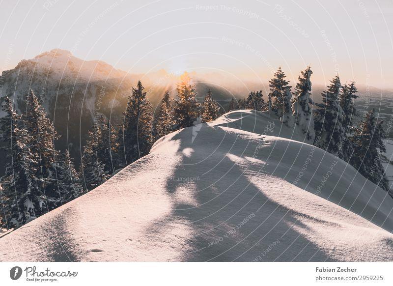 Sonnenuntergang am Tegelberg Berge u. Gebirge Natur Landschaft nur Himmel Sonnenaufgang Winter Schönes Wetter Wald Alpen wandern hell nachhaltig weiß Kraft